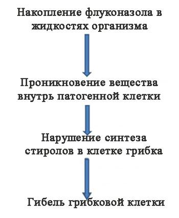 механизм действия Дифлюкана