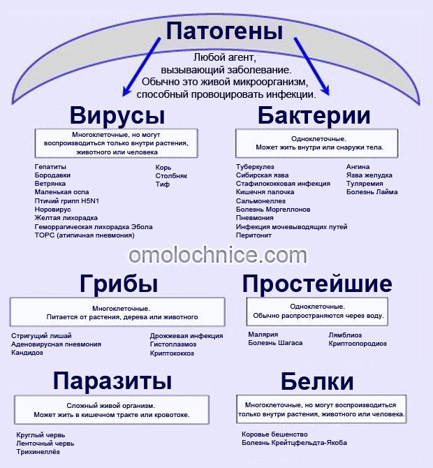 классификация патогенов
