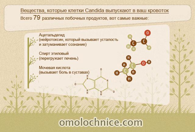 токсины, выделяемые Candida