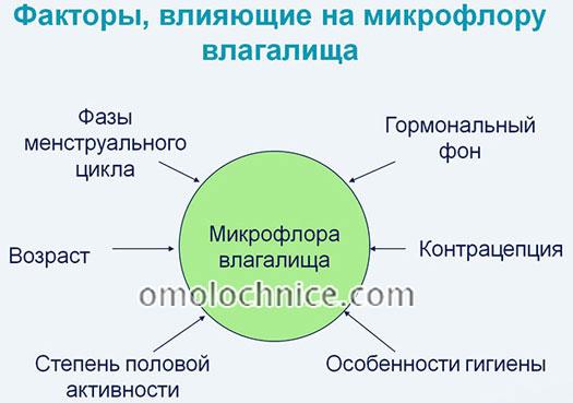 факторы влияния на микрофлору влагалища
